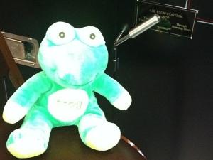 FrogQWithAirFlowAT50-50
