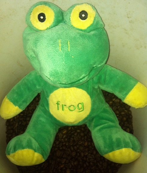 Frog Q Protects His Roast