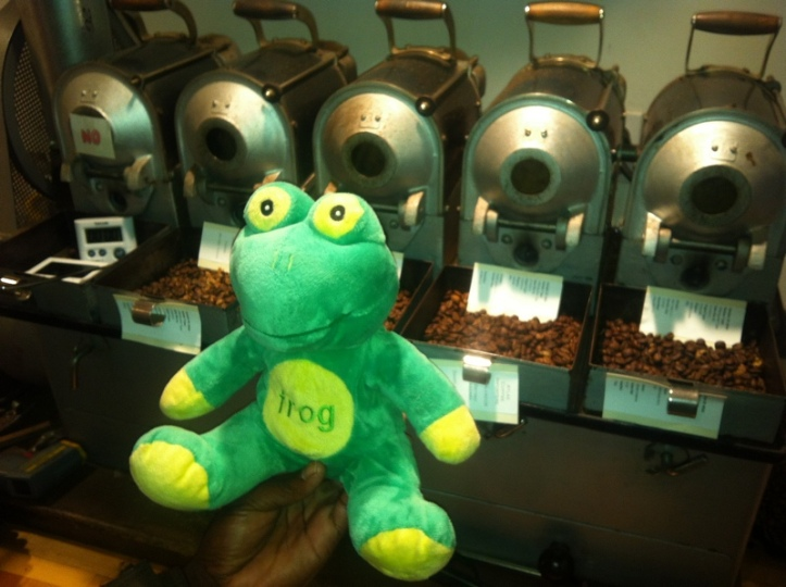 Frog Q at Atlas Lab