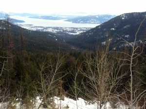 View From Schweitzer Mountain